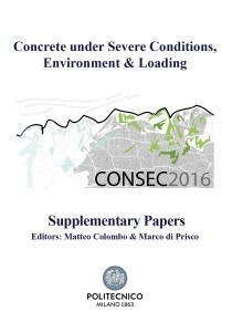 copertina supplementary papers DEF1 (2)